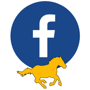 Facebook logo with mustang